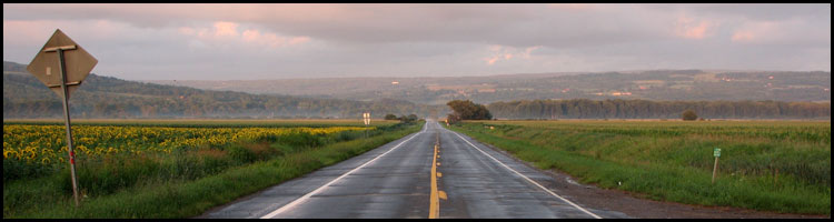 Why Do 57 Percent of Traffic Fatalities Occur on Rural Roads in Texas?